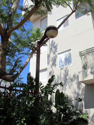 תאורת גינה אחרי שיפוץ דירה